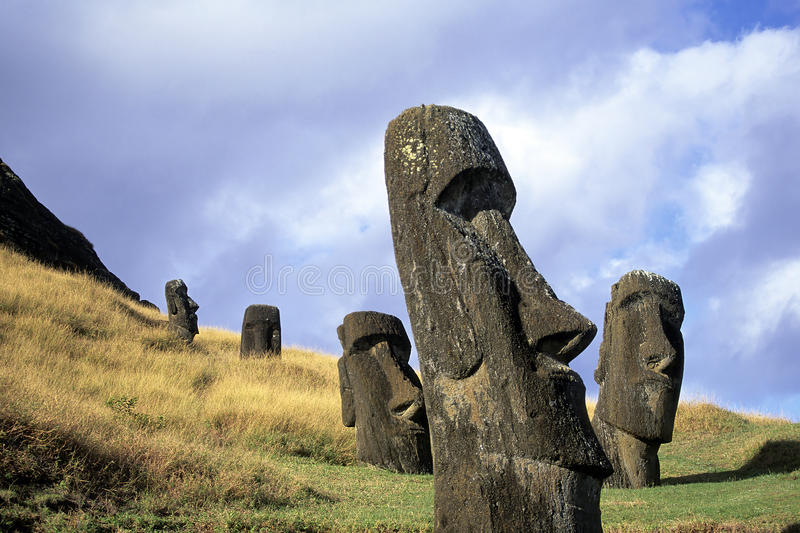 Moai- Easter Island, Chile. Moai heads at the volcanic quarry of Rano Raraku- Easter Island, Chile. Rano Raraku is a volcanic crater formed of consolidated stock images