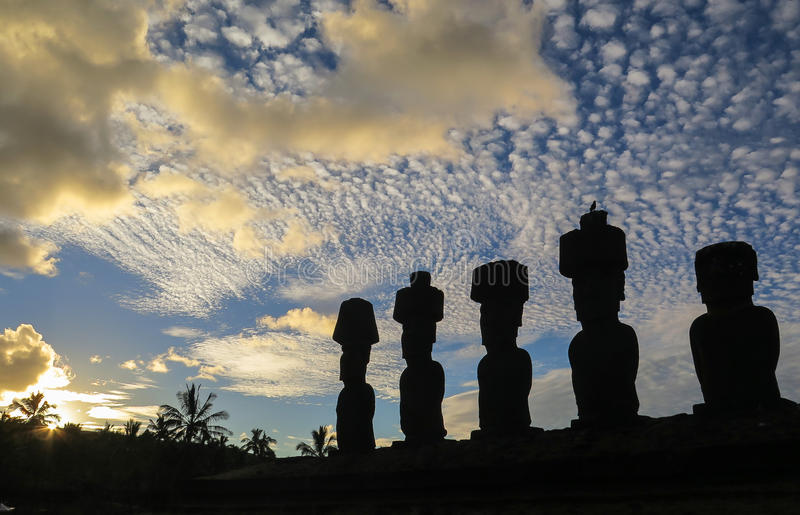 Moai in Easter Island, Chile. This picture is taken in Rapa Nui, Chile. Easter Island Rapa Nui: Rapa Nui, Spanish: Isla de Pascua is a Chilean island in the stock photos