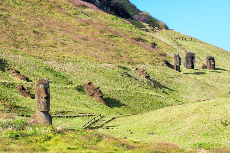 Moai at Rano Raraku. Nine different Moai visible at the historic site of Rano Raraku on Easter Island stock photo