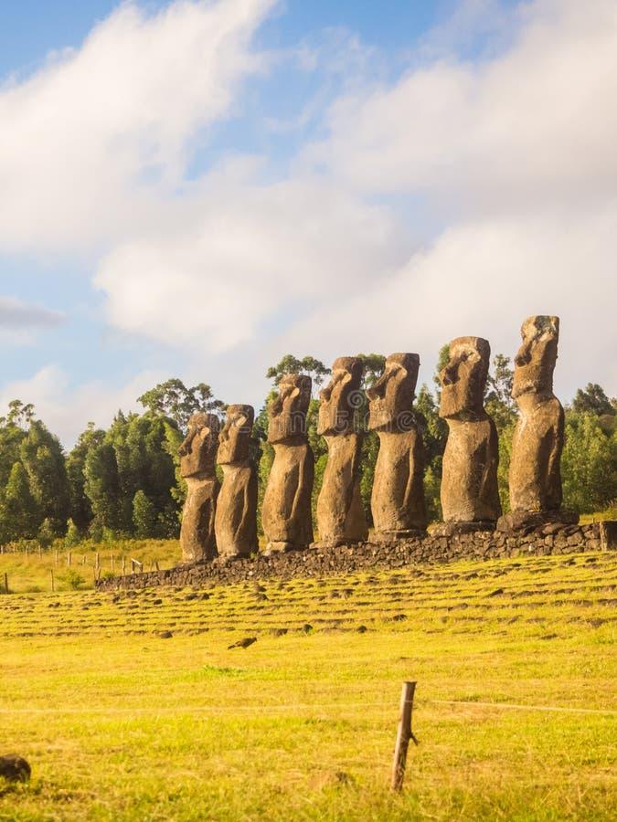 Moai zeven van Ahu Akivi, Pasen-Eiland, Chili stock afbeelding