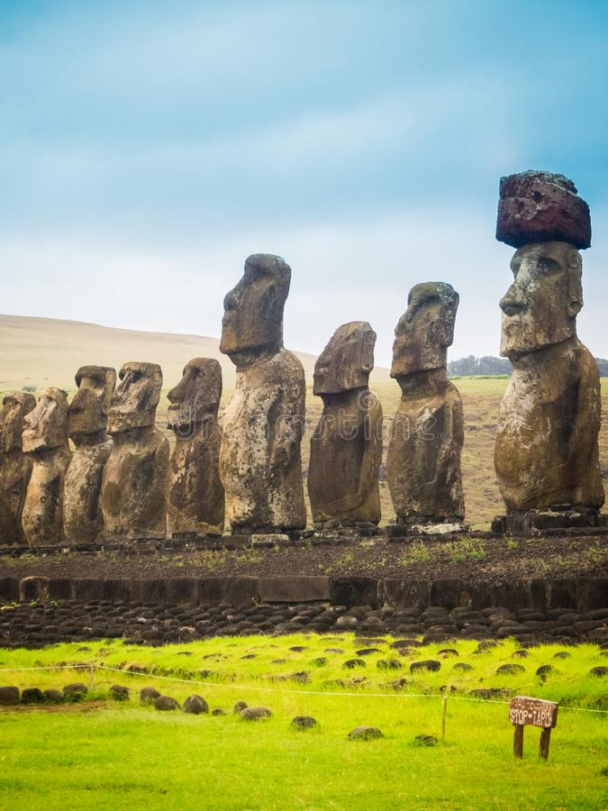 Moais at Ahu Tongariki in Easter island. The largest ahu in the island. 15 moai stock image