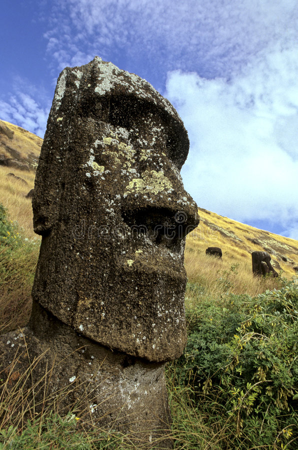 Moais- Easter Island, Chile. Standing moai within the volcanic quarry of Rano Raraku on the UNESCO World Heritage site island of Easter Island- Chile royalty free stock photo