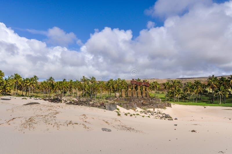 Moais på den Anakena stranden i påskön, Chile arkivfoto