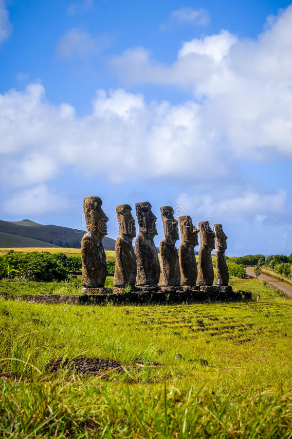 Moais statues, ahu Akivi, easter island royalty free stock photo