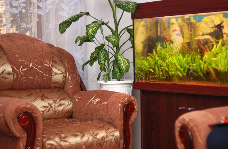 Mobília e aquário imagens de stock royalty free