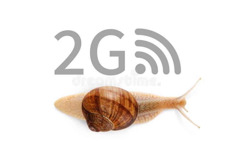Mobiel 2G-de mobiele netwerkenconcept van de netwerktechnologie Internet-Hoge snelheids mobiele breedband Draadloze cellulaire Si royalty-vrije stock afbeelding
