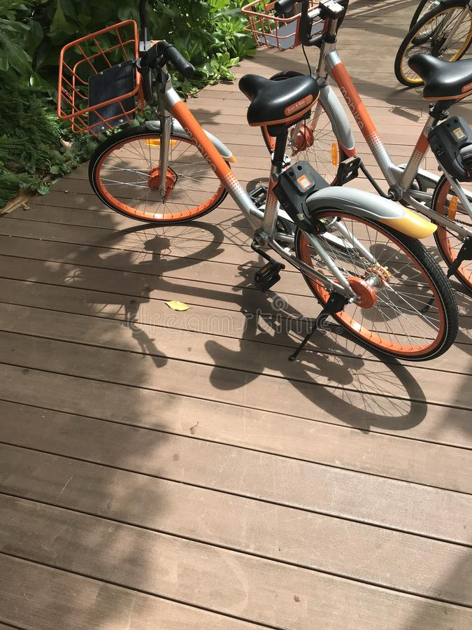 `mobike` brand bicycles parking on wooden walk way to sentosa, singapore royalty free stock photos
