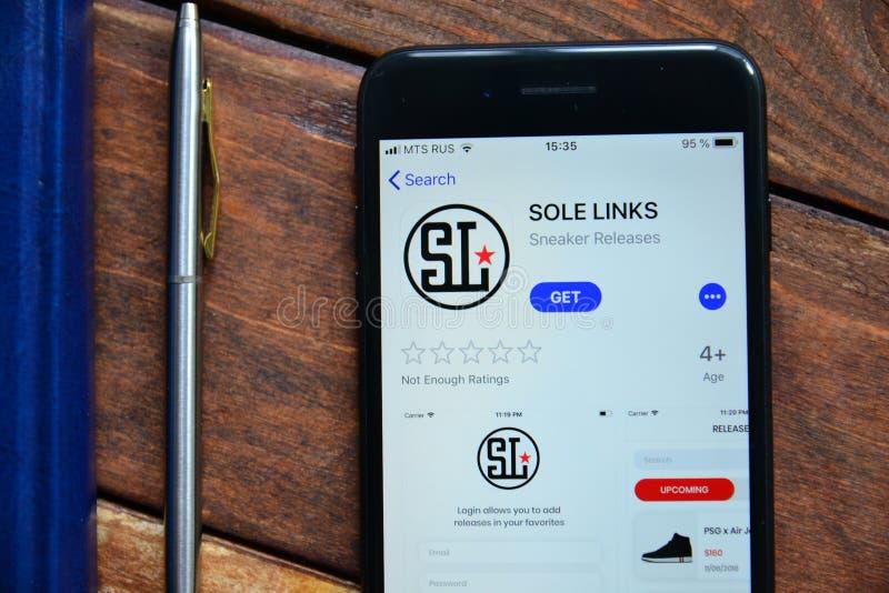 Mobil app för att beställa saker royaltyfria bilder