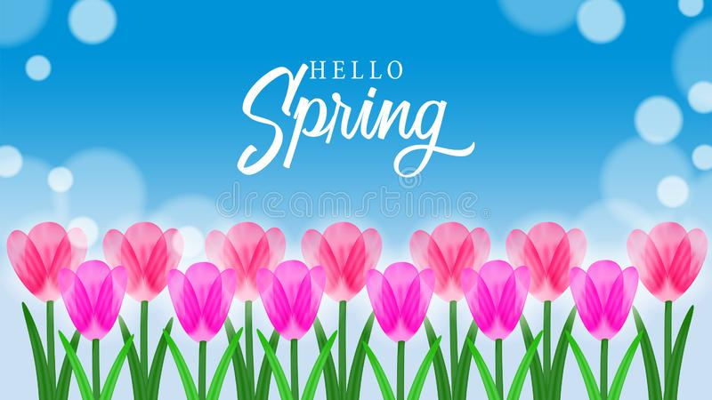 Hello Spring background with beauty tulips flower at field blossom. Hello Spring background with beauty flower blossom. Suitable for background, banner flyer stock illustration