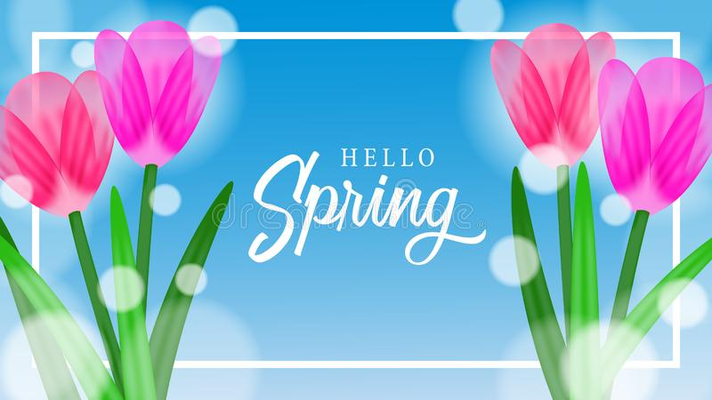 Hello Spring background with beauty tulips flower blossom. Hello Spring background with beauty flower blossom. Suitable for background, banner flyer stock illustration