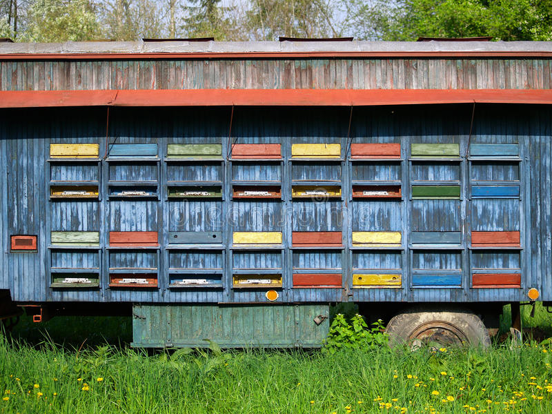 Mobile Beehive. Man-made movable beehives on wheels royalty free stock photo