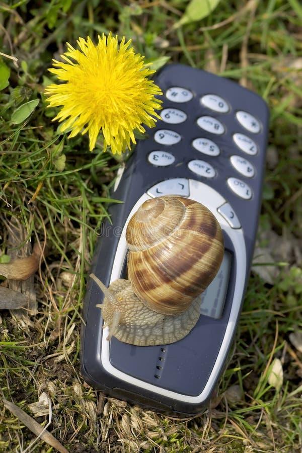 Mobile lent dans la nature photo libre de droits