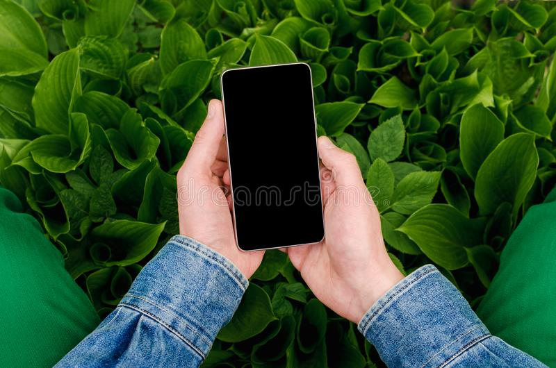 Mobile phone in hands a young hipster business man royalty free stock photo