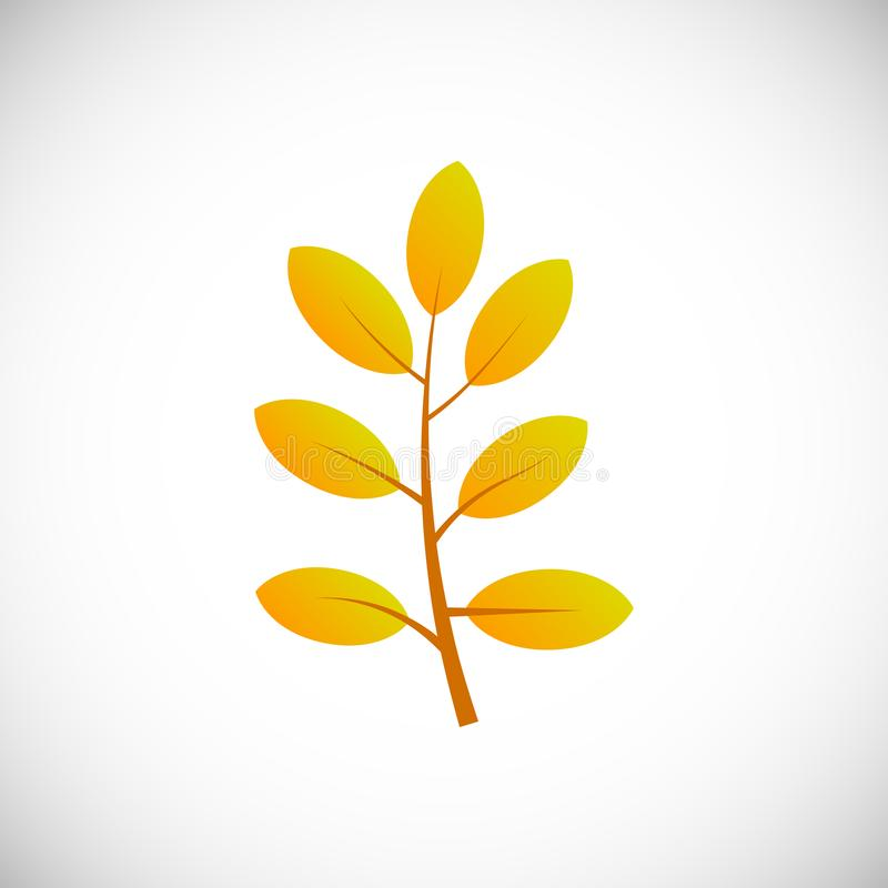 Autumn leaf on a white background royalty free stock image