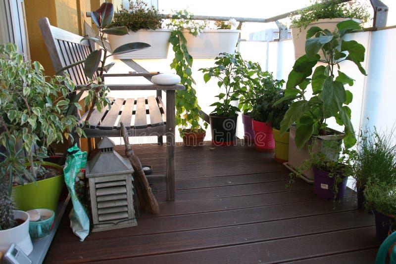 Mobilia E Un Piccolo Giardino Sul Terrazzo Fotografia Stock ...