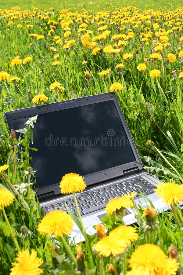 Download Mobility stock photo. Image of mobility, modern, grass - 5425920