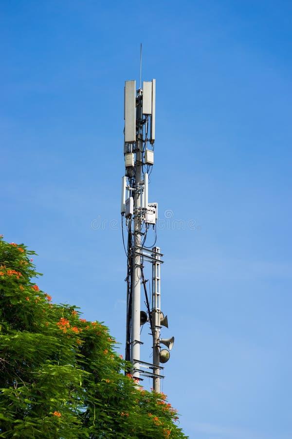 Mobiltelefonantena med trädbakgrund för blå himmel och gräsplan royaltyfria bilder