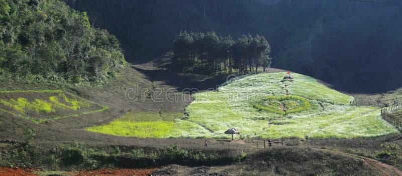 Moc Chau谷,越南 库存照片