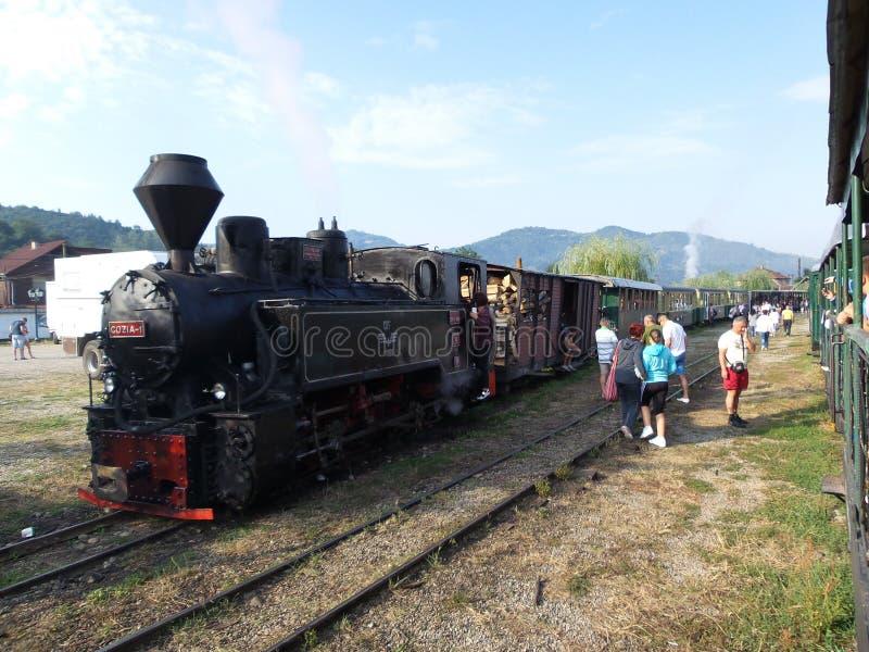 Mocanita - touristischer Zug in Maramures lizenzfreies stockfoto