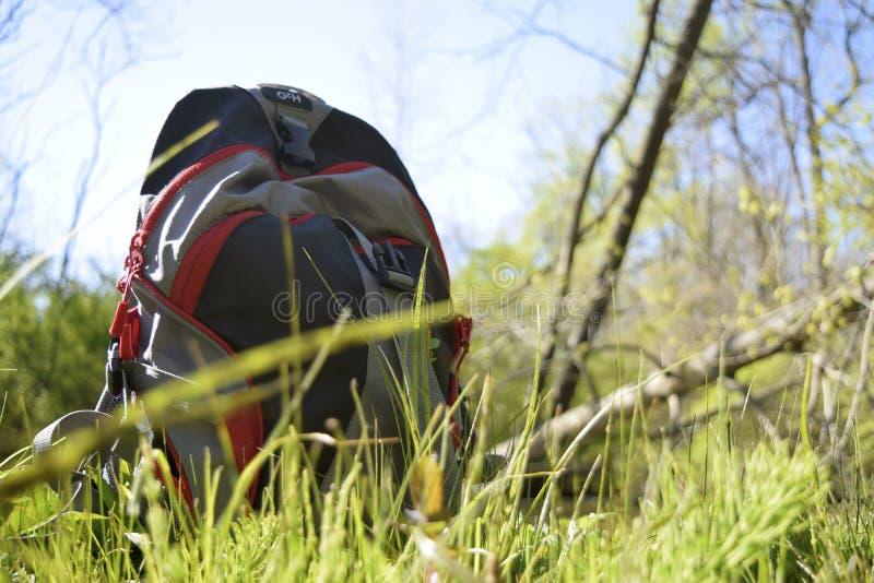Mochila en bosque imagen de archivo libre de regalías