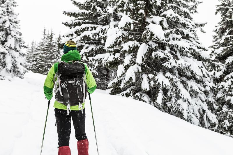 Mochileiro que caminha na floresta nevado do inverno branco foto de stock royalty free