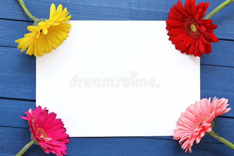 Mock up artwork for celebration, drawing and text on a blue wooden background with four colored flowers gerberas.Flat stock photography