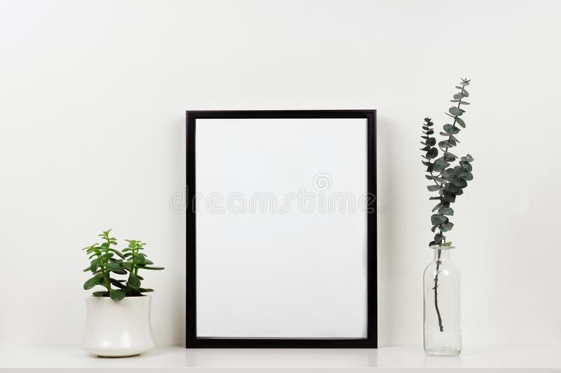 Mock up black frame against white wall with plant and branches on a white shelf stock photography
