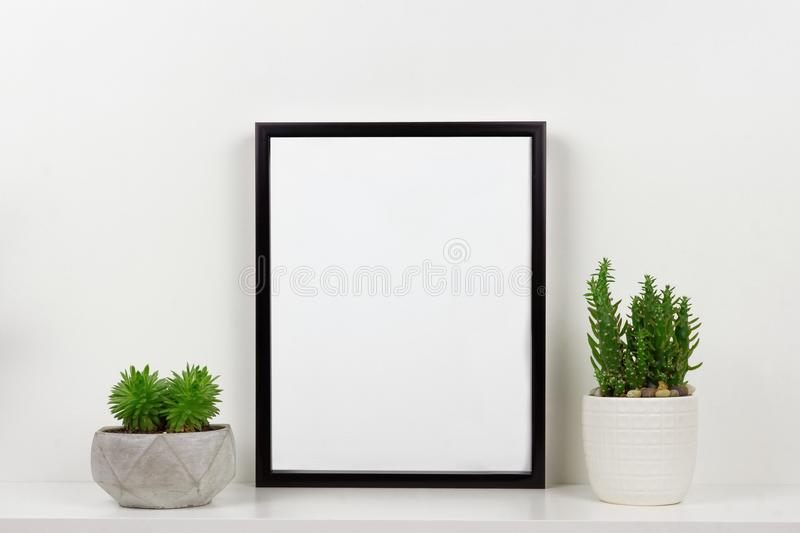 Mock up black frame against white wall with succulent plants on a white shelf stock images