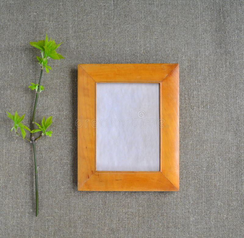 Mock up with Frame and Branch royalty free stock photos