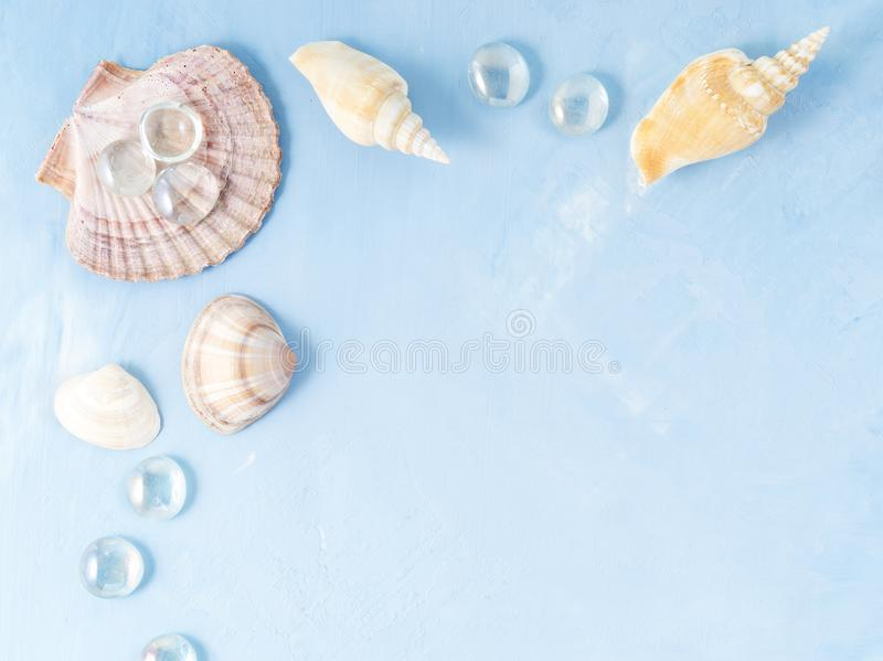 Mock up with frame of seashell on blue stone background, scallop shell, copy space. Summer concept of holiday by sea stock image