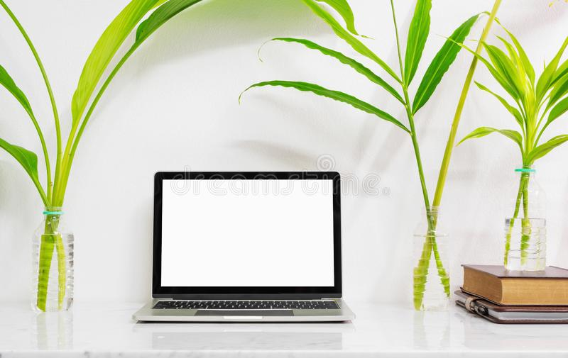 Mock up laptop with supplies and plant on marble desk table royalty free stock image