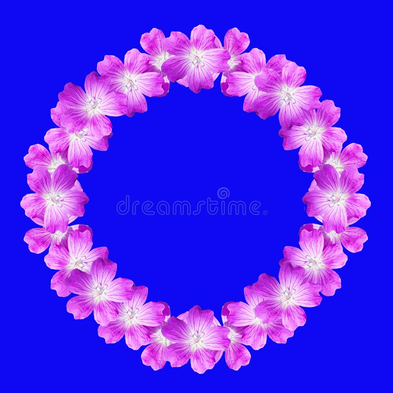 Mock up round floral frame from flowers of wild geranium isolated on blue background vector illustration