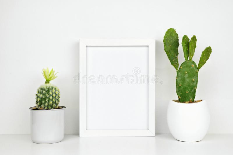 Mock up white frame with cactus plants on a white shelf against a white wall royalty free stock image