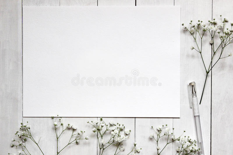 Mockup for presentations with Gypsophila flowers stock images
