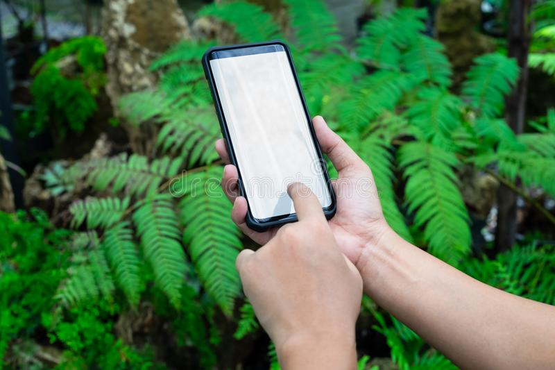 Mockup smartphone. Female holding phone in hand with blurred garden at home. Blank screen mock up mobile phone for your royalty free stock photography