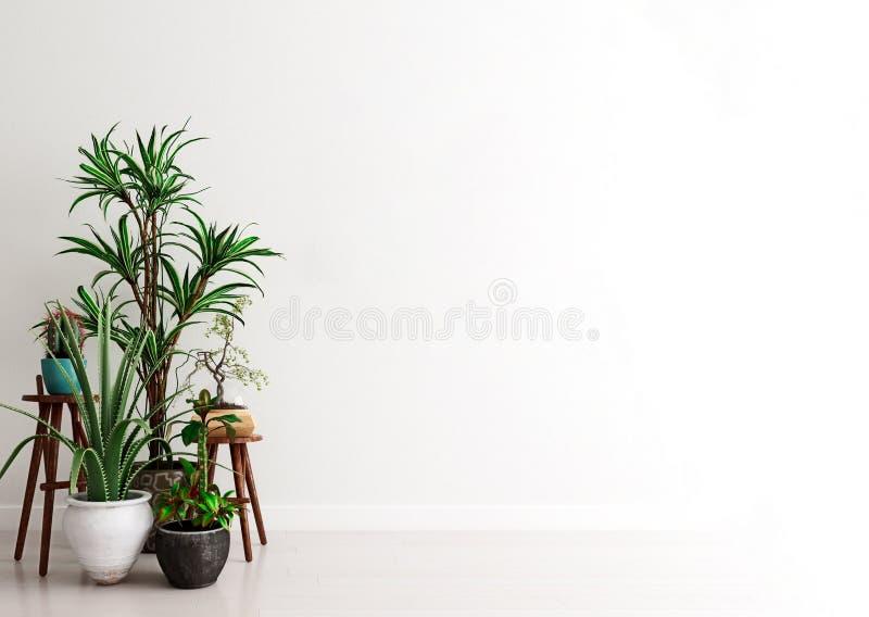Mockup Wand mit einer Gruppe von Topfpflanzen im modernen Interieur, Augenblick der Betrachtung, skandinavischer Stil lizenzfreie abbildung