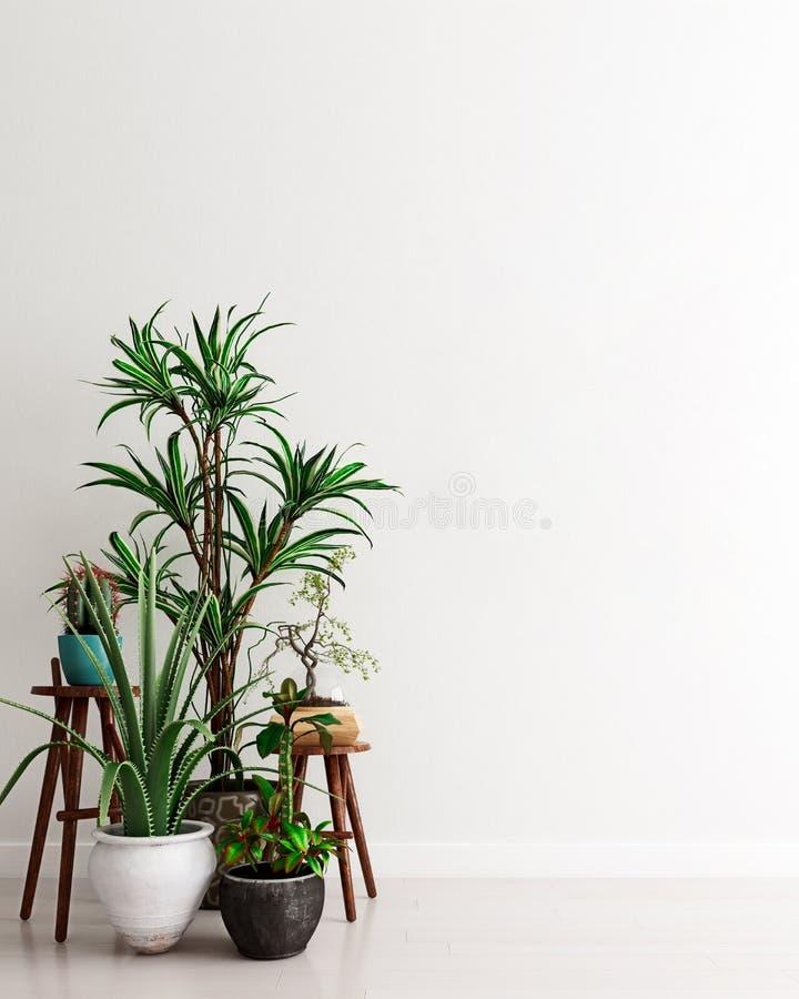 Mockup Wand mit einer Gruppe von Topfpflanzen im modernen Interieur, Augenblick der Betrachtung, skandinavischer Stil stock abbildung