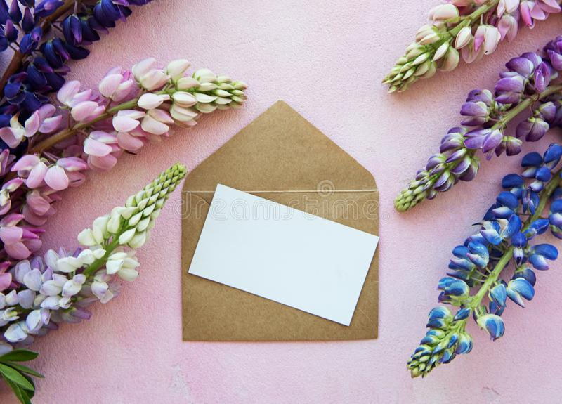 Mockup greeting card  with lupine flowers. Mockup white greeting card and envelope with lupine flower on a pink concrete background royalty free stock image
