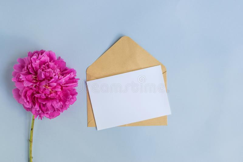 Mockup white greeting card and envelope with pink peony. On a light blue background stock image