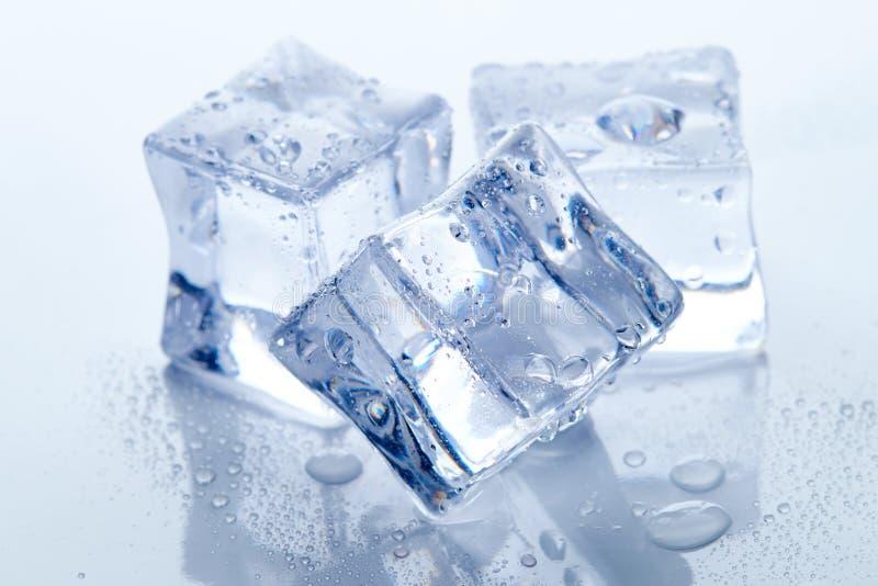 Moczy kwadratowych kostka lodu zdjęcie stock