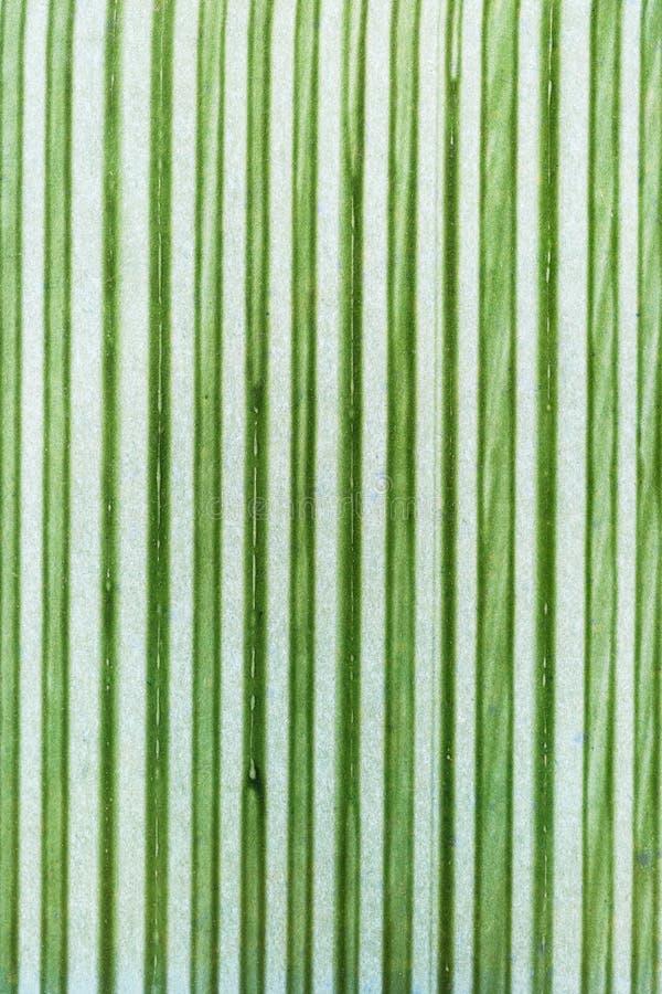 Modèle abstrait - rayures vertes photographie stock libre de droits