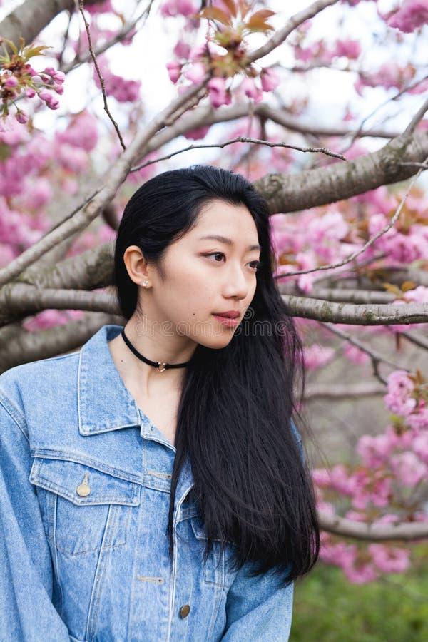Modèle asiatique posant sous l'arbre de floraison photographie stock