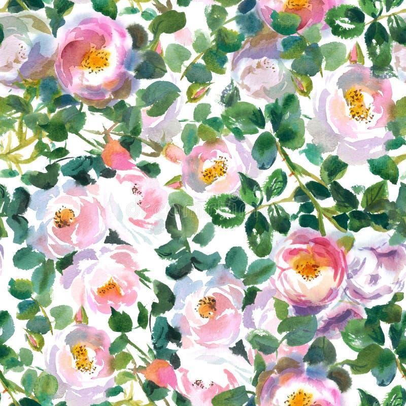 modèle avec beaucoup de roses rose-clair d'aquarelle illustration stock