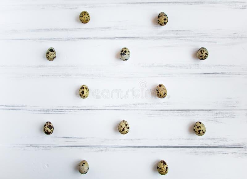 Modèle avec des oeufs de caille sur la table en bois blanche de vintage Configuration plate, vue supérieure photos stock