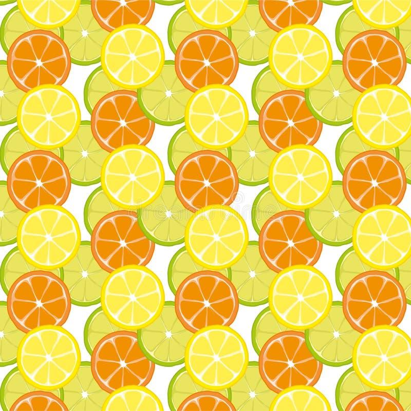 Modèle avec la préparation d'agrumes de la chaux et de l'orange de citron illustration de vecteur