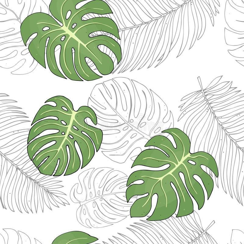 Modèle avec les feuilles et les palmiers tropicaux de monstera sur le fond blanc Illustration colorée de vecteur dans le style de illustration stock