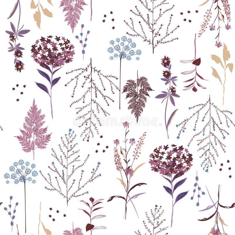 Modèle botanique lumineux de beau vintage sans couture, beaucoup genre de f illustration de vecteur