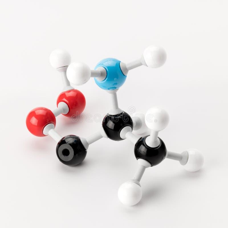 Modèle chimique d'alanine fait de boules et tiges sur un backgro blanc images libres de droits