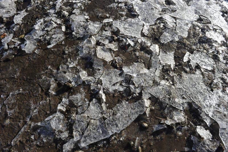 Modèle congelé naturel photographie stock libre de droits