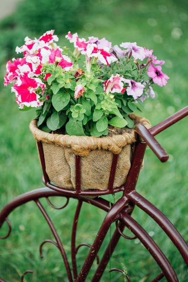 Modèle décoratif Old Bicycle Equipped de vintage photographie stock